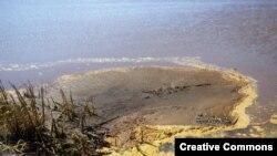 Защищая речку Пахотка в Свердловской области, пострадал эколог