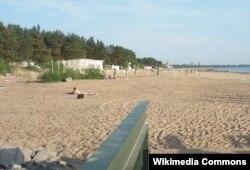 """Натуристский пляж """"Дюны"""" вблизи Санкт-Петербурга, 2013 год"""