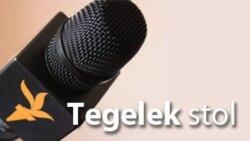 Türkmen-türk gepleşikleri: migrantlar ýatdan çykaryldymy?