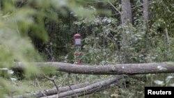 Эстония-Орусия чек арасы. Эстониянын Мииксе кыштагына чукул жер. 7-сентябрь 2014