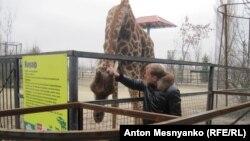 Всех своих животных Олег Зубков помнит по именам