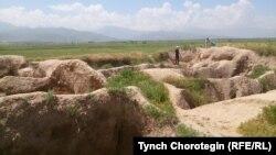 «Бурана» шаар чалдыбары - айтылуу Баласагындын урандылары. 7-июнь, 2015-жыл.