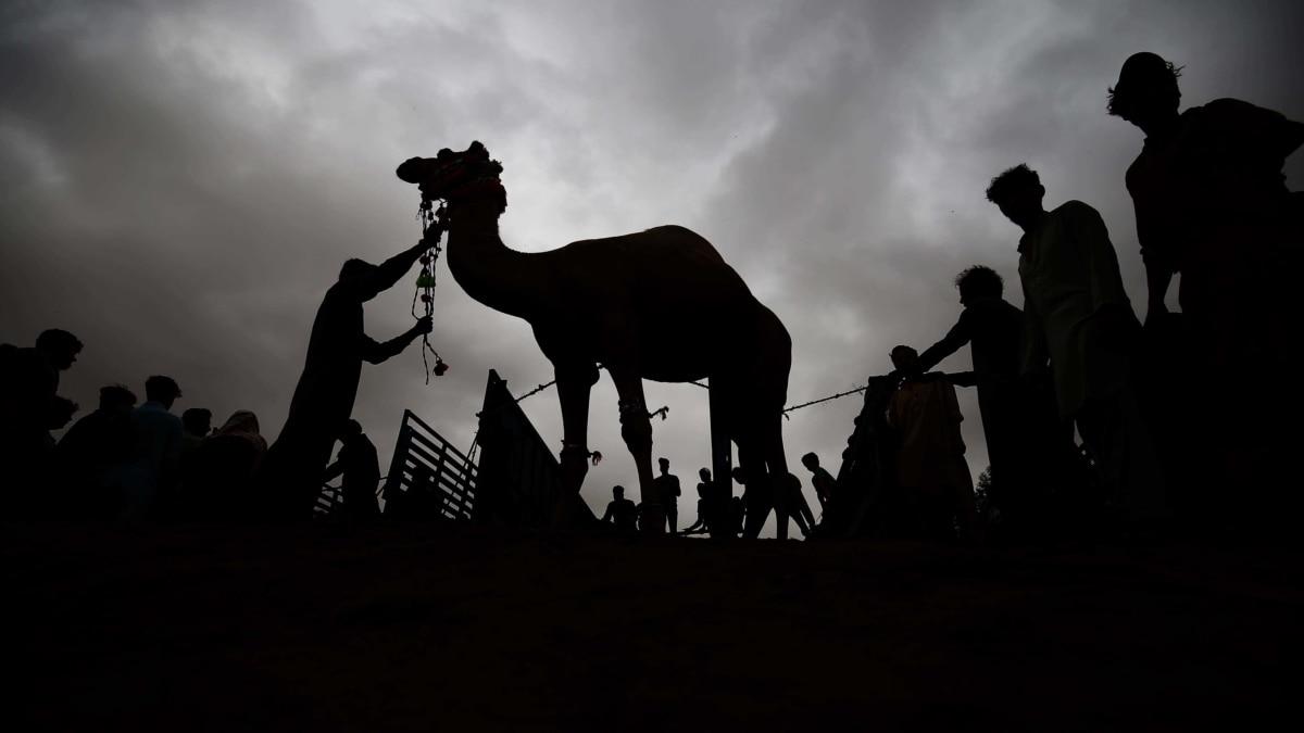 Image Central Asia Marks Eid Al-Adha Amid Coronavirus Restrictions