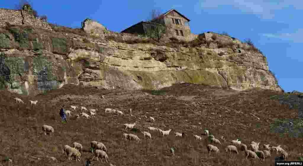 На південному схилі плато Бурунчак