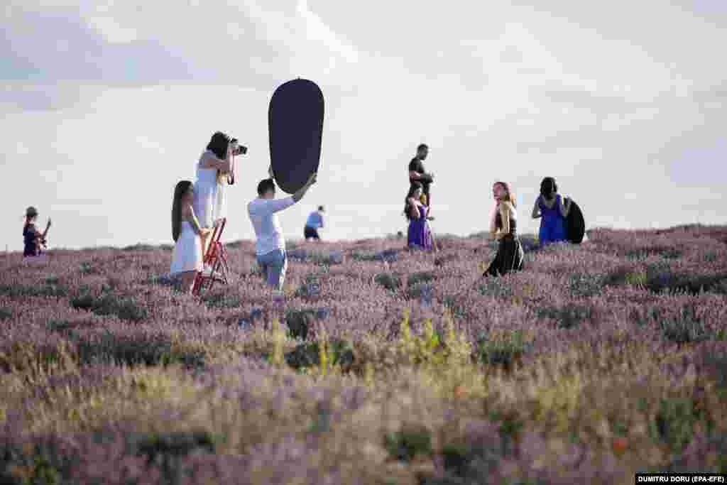 People take pictures in a lavender field outside Chisinau, Moldova. (EPA-EFE/Dumitru Doru)