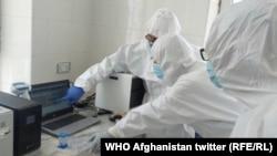 لابراتوار تازه ایجاد شده آزمایش ویروس کرونا در ولایت پروان.