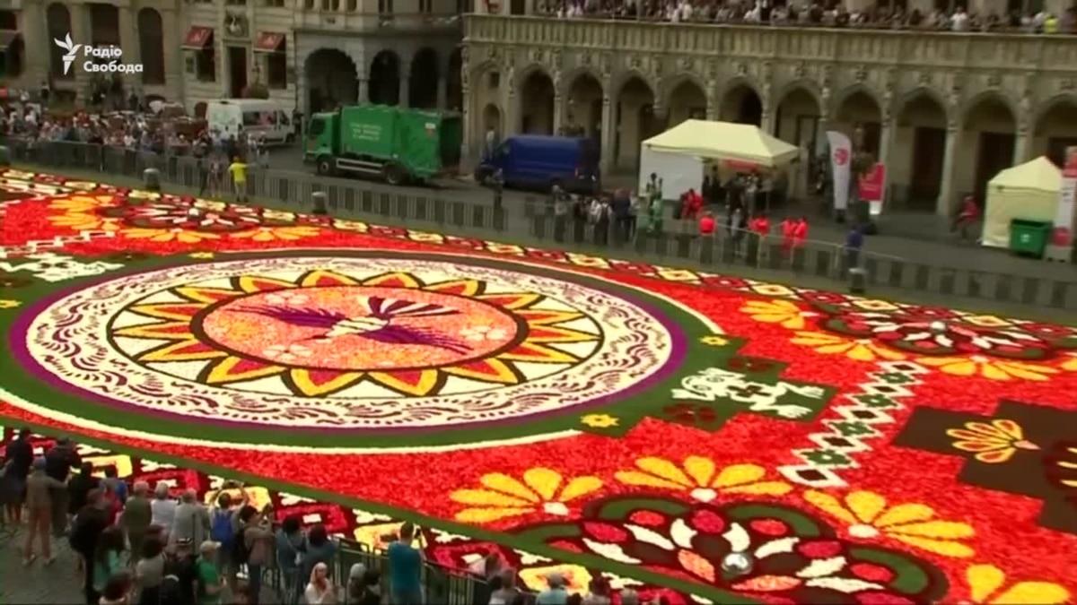Самый известный ковер из цветов в 1800 квадратных метров расцвел на Гран-Плас в Брюсселе