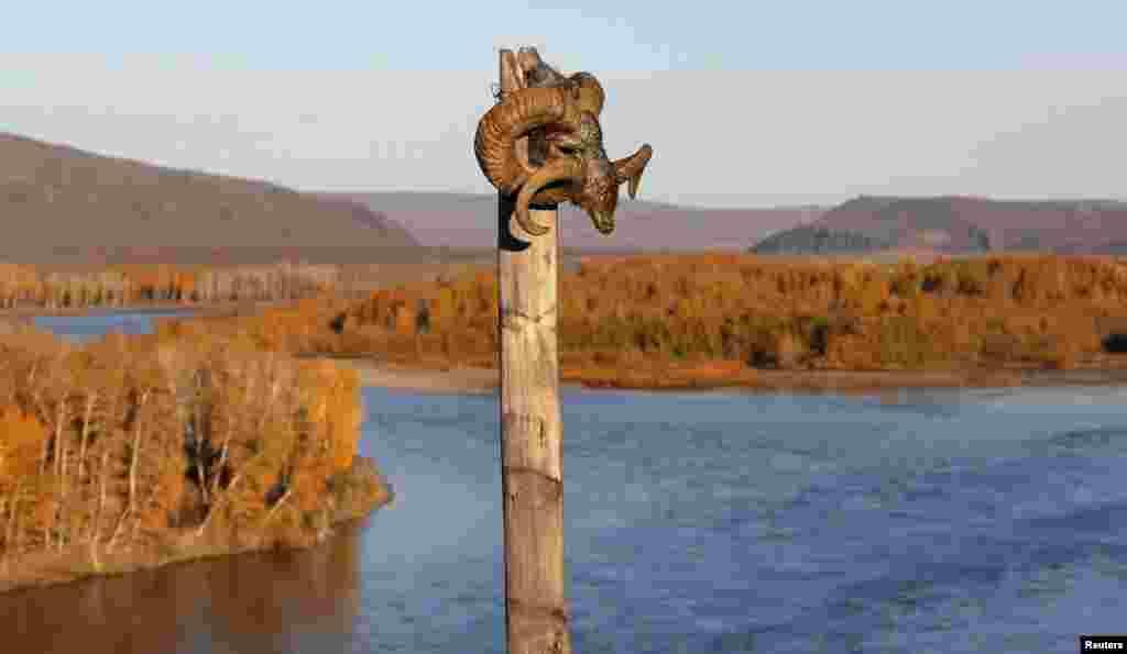 В шаманизме череп горного барана считается священным. Согласно поверьям, того, кто проявит неуважение к атрибуту, непременно ждет смерть.