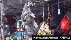آرشف، شکار پرندگان در افغانستان