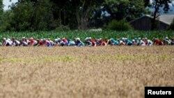 Велогонщики «Тур де Франс» у сільській місцевості, ілюстративне фото