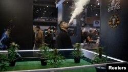 В павильоне Первой международной выставки Cannabis Expo в Афинах, январь 2018