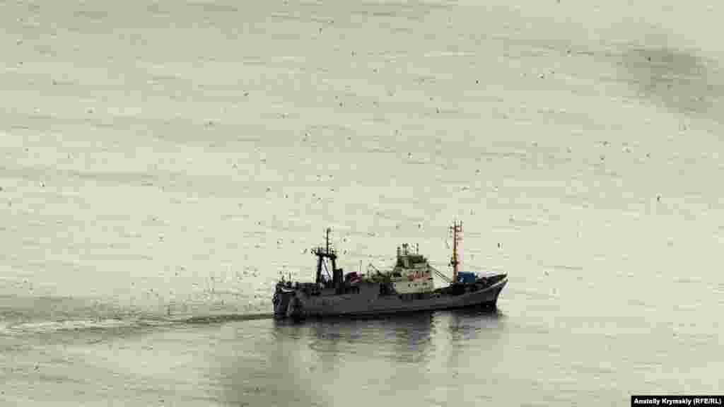 Негода не завадила екіпажу сейнера вести промисел біля берегів Лівадії