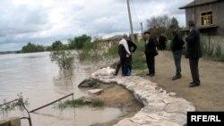 Salyan, 5 may 2010