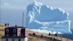 До берегів Канади прибило гігантський айсберг (відео)