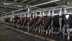 Jusuf otvorio, a država bi mogla zatvoriti mljekaru u Kozarcu