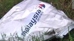 Катастрофа MH17. Иск против Путина