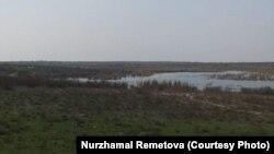 Ўзбекистон-Қозоғистон чегарасига яқин Қоғали кўли чети.
