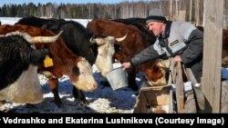 Фермер Павел Кутявин