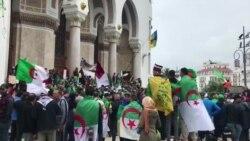 Алжир: тысячи людей протестуют против несменяемости власти