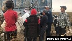 Алқаптан теріп әкелген мақтаны өткізіп тұрған жасөспірім. Түрікстан облысы, 29 қыркүйек 2020 жыл.