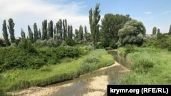 Пересыхающая река Биюк-Карасу вблизи Белогорска, июнь 2020 года