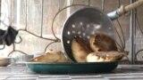 Тесто, мясо, лук и тандыр: как готовят самсы на юге Кыргызстана