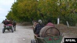 Așa arată dezvoltarea umană în satul Negrești, Strășeni (foto I. Ciocan)