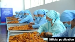 USAID is often directed toward economic development, such as this fruit-processing plant in Kyrgyzstan (file photo).