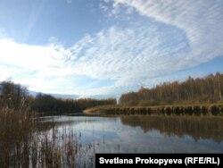 Река Желча в Гдовском районе