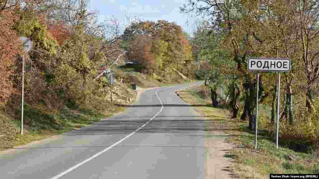 У село Рідне веде лише одна дорога