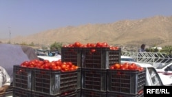 Iraq -- Harvest of wheat and barley seemed to help for the disposal of the product of the local fruit in Duhok, undated