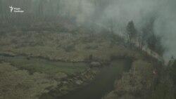 Згоріле селище у пожежах в Житомирській області – відео з дрона