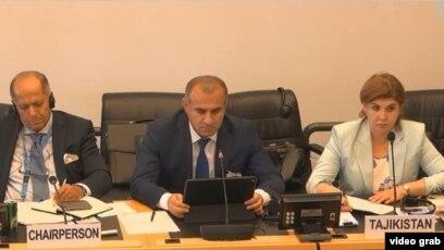 Реферат комитет оон по правам человека 2854