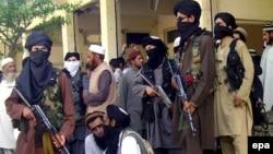 شماری از شبهنظامیان طالبان پاکستان در آستانه خروج از منطقه بونیر