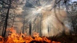 Пожары в Турции и последствия для Крыма | Крымский вечер