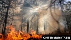 A wildfire ablaze in Russia's Irkutsk region on May 27.