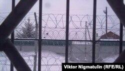 Вид из окна кемеровского СУВСИГа