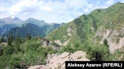 Мощный обвал перегородил ущелье и создал естественную плотину (на переднем плане). Алматинская область, 18 июля 2010 года.