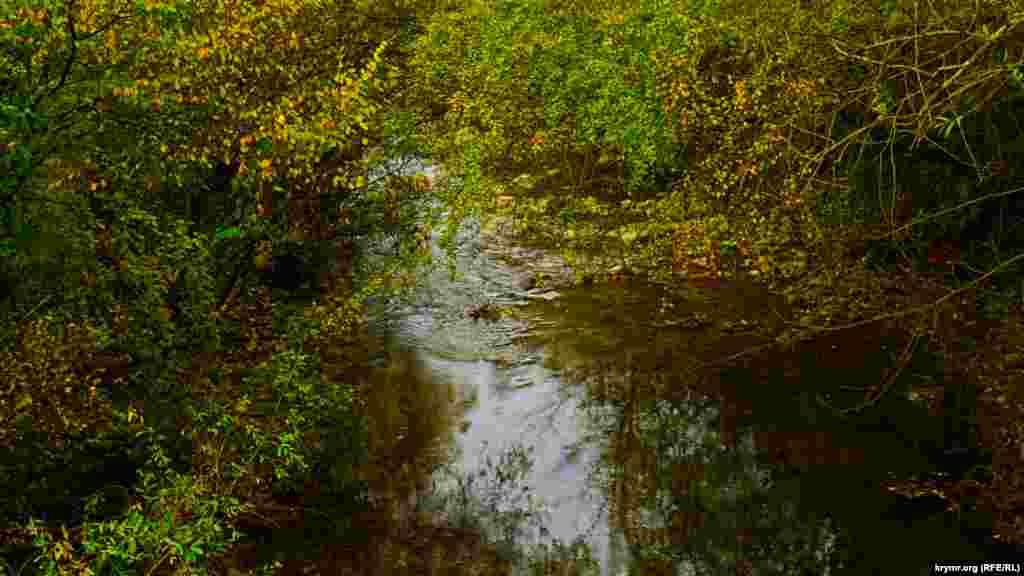 Сама Коккозка у центрі села – це тиха, типово рівнинна річка