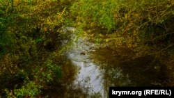 Річка Коккозка, осінь 2016 рік