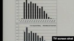 Tablica podataka prikazana u sudnici 25. srpnja 2013.