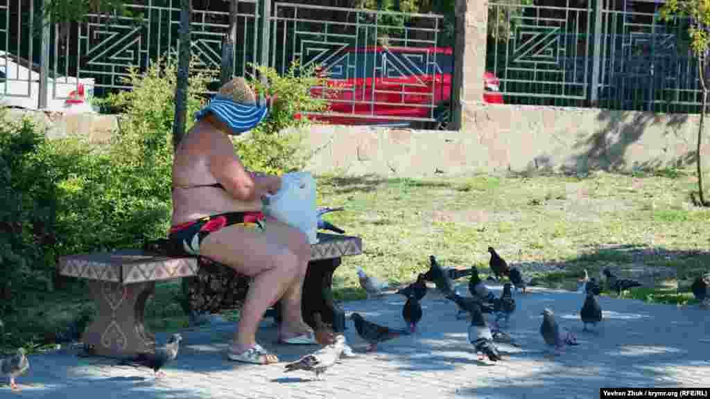 Пенсионерка отдыхает на лавочке в тени и кормит голубей