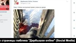 """Зоозащитники успели снять скрин поста из паблика в """"ВКонтакте""""."""