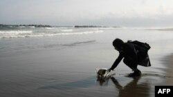 Вшанування жертв цунамі в Японії, 2012 рік