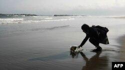 17-річна дівчина вшановує пам'ять свого батька, який загинув минулого року під час цунамі