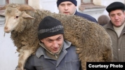 A man carries a sheep for slaughter for Eid al-Adha in Kazan.