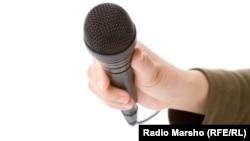 Микрофон. Иллюстрационное фото