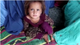 Afghanistan - families displaced by Taliban attacks and fighting in Kunar Province - screen grab - Radio Azadi