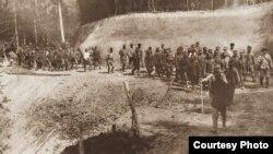Prizonieri austro-ungari luați de români la Oituz, 1917,Arhivele Naționale Istorice Centrale