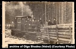 Робота депортованих на лісоповалі. 1958–1959 роки